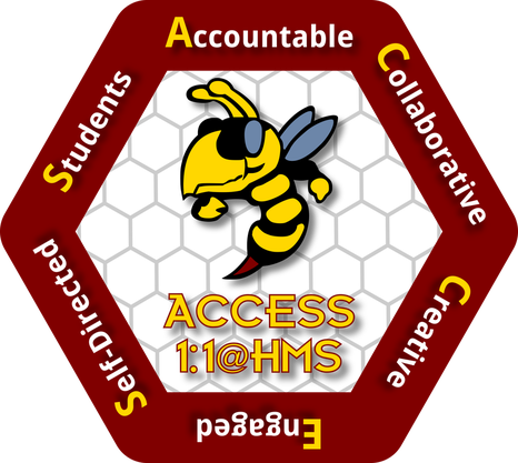 Access 1 to 1 picture